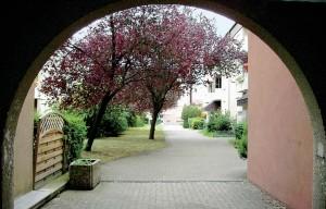 Zugang zur Albufersiedlung von der Zeppelinstraße aus.